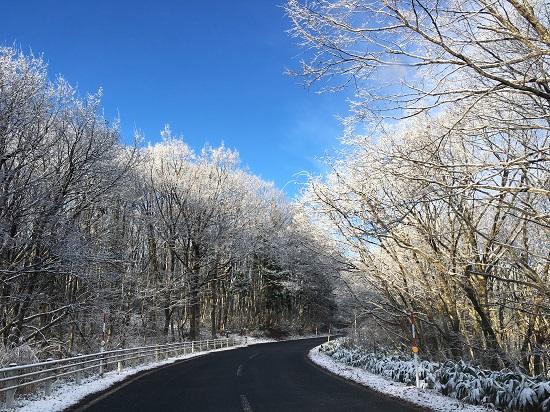 鳥取の建築・設計事務所 PLUS CASA/雪景色